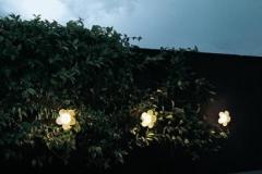 38-lumière-extérieur-fleur-WALLFLOWER-flos-382x382