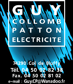 GUY COLLOMB PATTON ELECTRICITE